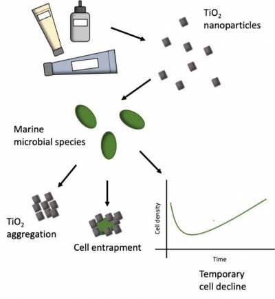 Chemistry & the Environment Nanomaterials