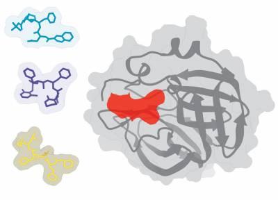Covid 3 Molecules Coveney Group