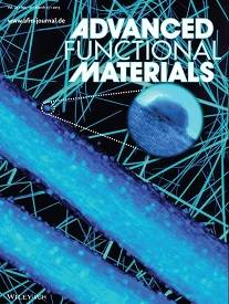 Fucntional_Materials_2013