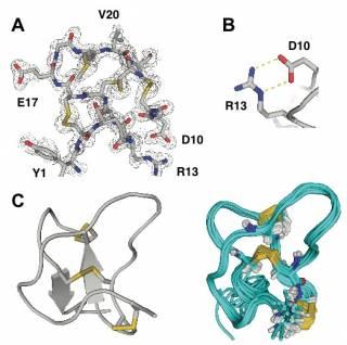 HPLC peptide purification