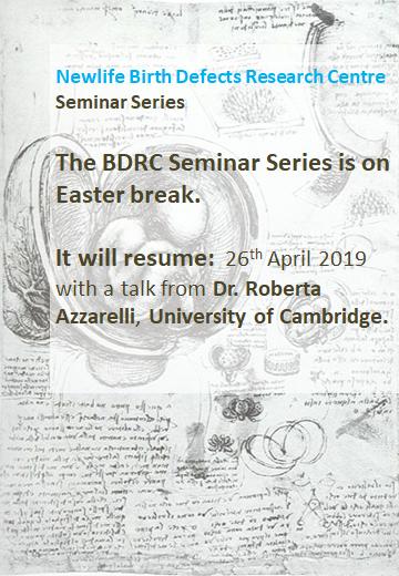 BDRC Seminar Series