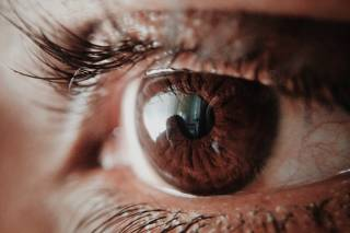 Close up human eye