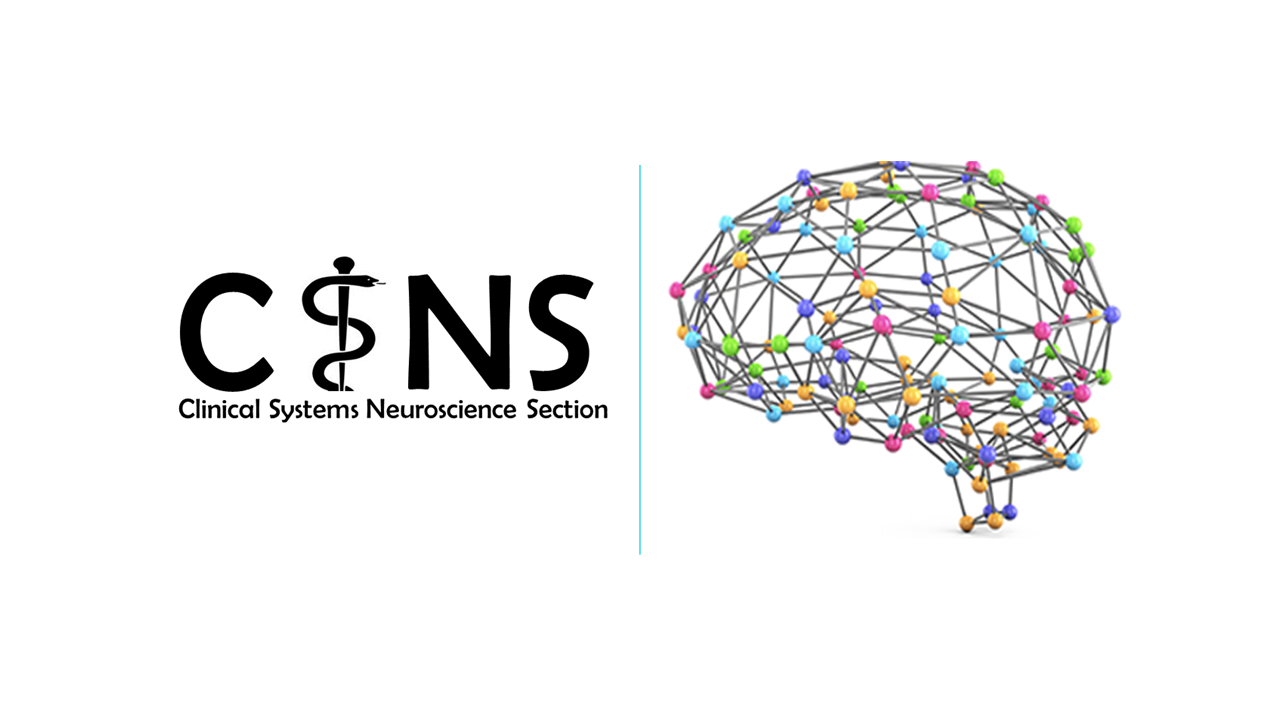 Clinical Systems Neuroscience Section Logo