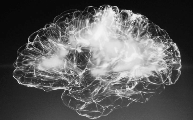 A black and white image of a brain glowing white