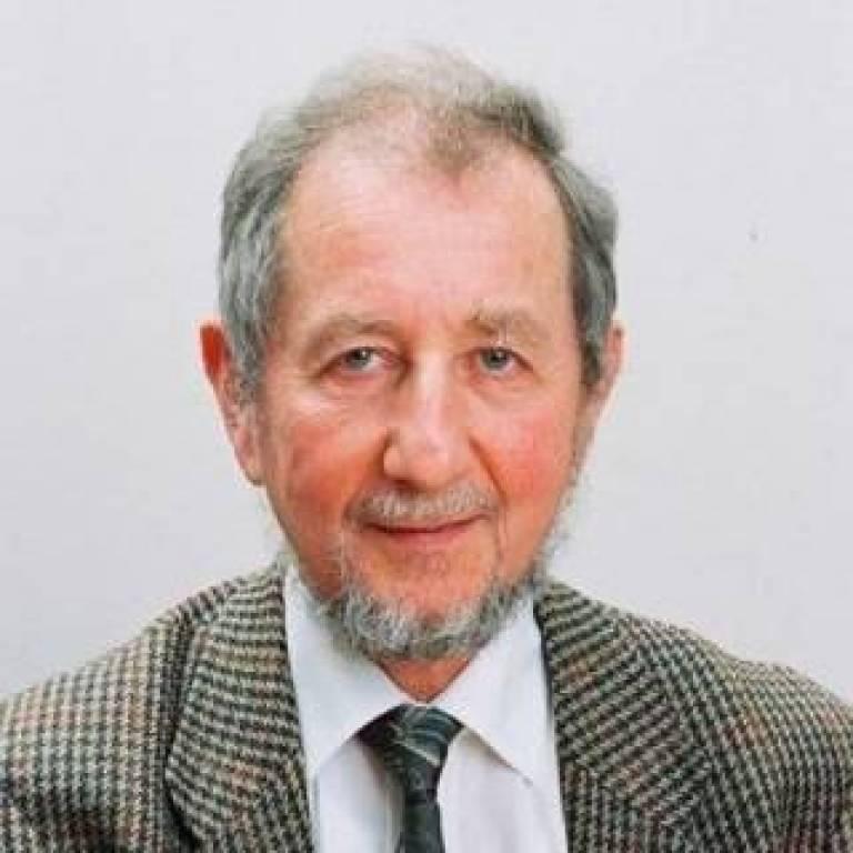 Professor Harvey Goldstein
