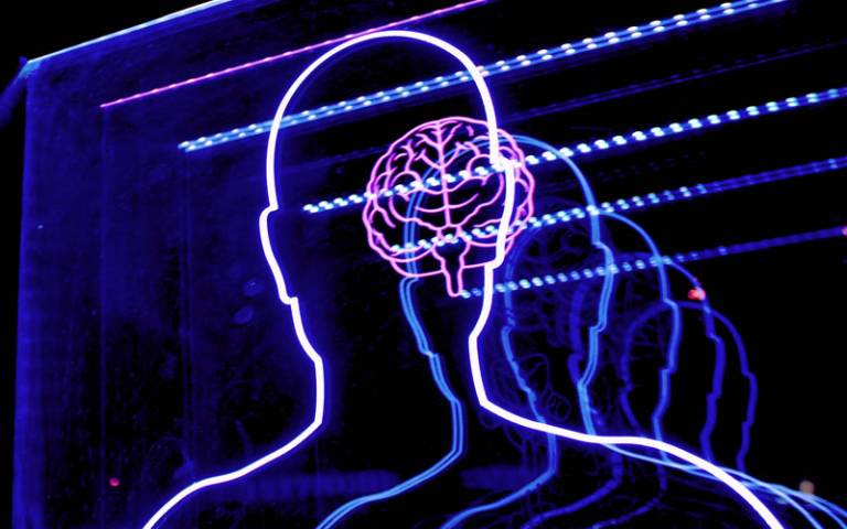 A fluorescent display of a head and brain