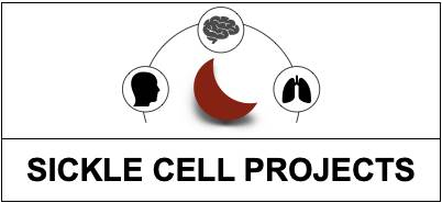 click here for Sickle Cell projects