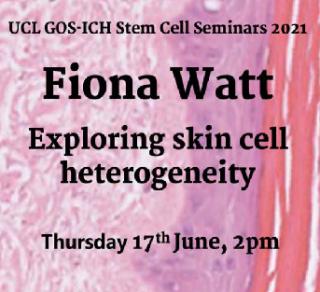 poster of Fiona Watt talk