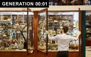 Generation One - Grant Museum
