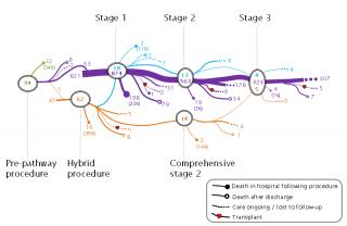 Long term outcomes (2013 - 2022)