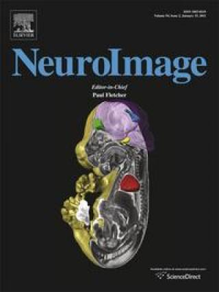 front cover neuroimage