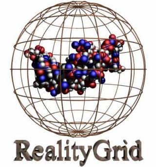 RealityGrid