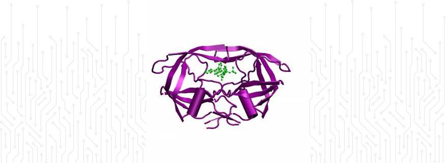HIV-1 Protease