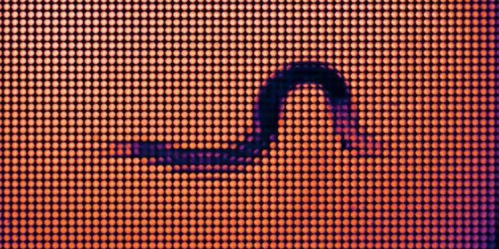 Timelapse images showing C.elegans moving on an agarose pad captured using a light field microscope