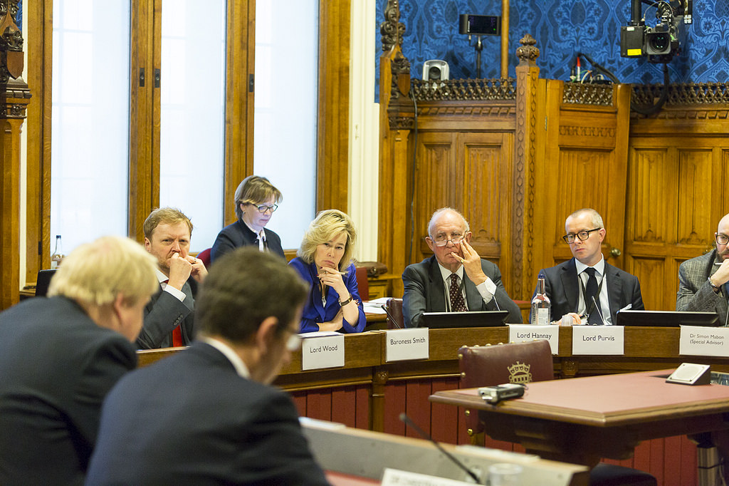 House of Lords committee work