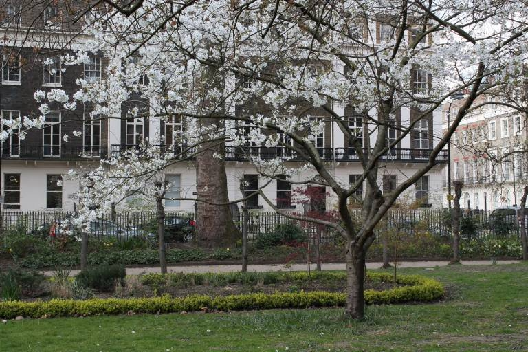 The Constitution Unit, Tavistock Square
