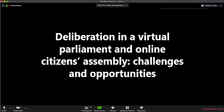 Virtual parliament and online citizens' assembly