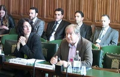 Evidence on Commons legislative committees - resized