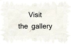 Visit the gallery