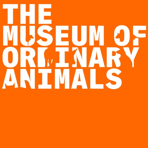 Museum of Ordinary Animals