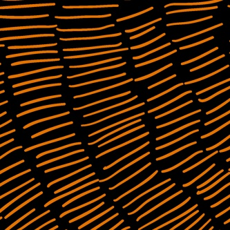 Colour illustration of orange strands