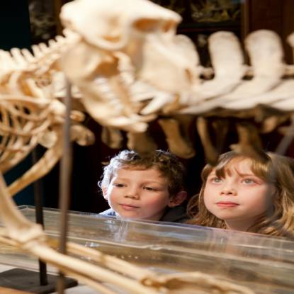 Children looking at skeleton
