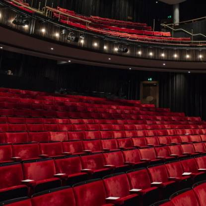 Colour photo of the seats in the Bloomsbury Theatre's main auditorium