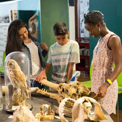 Families handling specimens