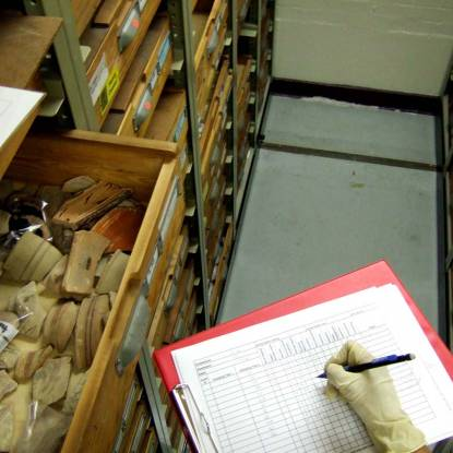 Collections in a drawer being examined
