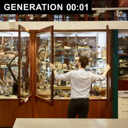 A person looks at an case full of skeletons and zoological specimens
