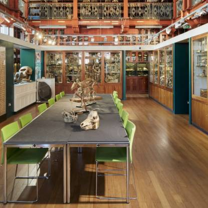 Colour photo of a grand Edwardian room with skeletons on a central table and in cabinets around the walls