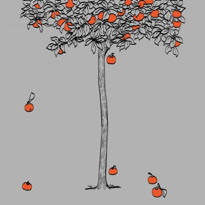 Illustration of a tree outlined on a grey background. Orange fruit are falling on the ground