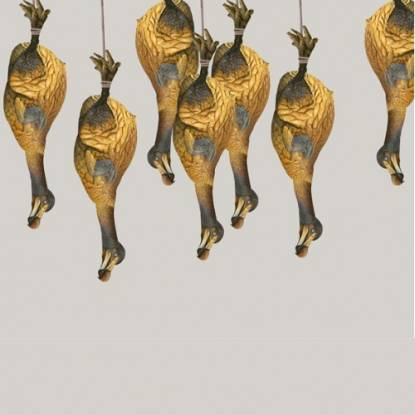 Painting of dodos hanging like chicken in a butchers