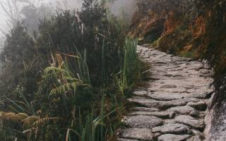 stone path leading into the mist