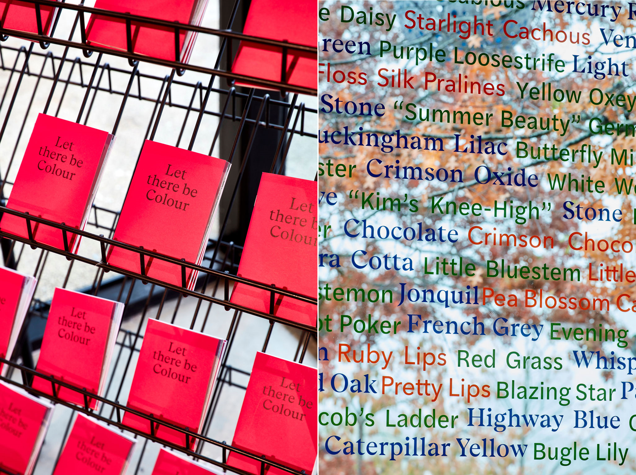two image side by side. On left, bright red booklets on rack saying 'let there be colour'. On right, multicoloured text on glass in front of orange and green leaves. Text is names of colours.