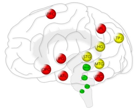 Brain Behaviour Group image