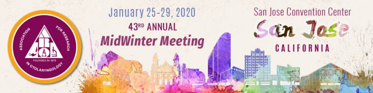 ARO 2020 Mid Winter Meeting logo