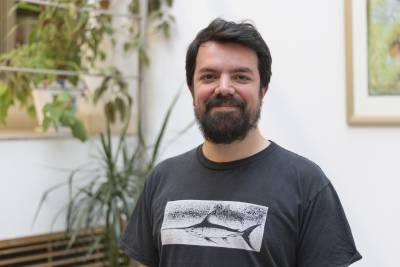 Profile picture of Joe Sollini