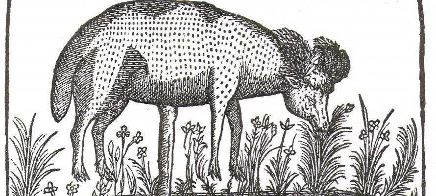 Claude Duret, Histoire admirable des plantes et herbes esmerveillables et miraculeuses en nature… (Paris, 1605)