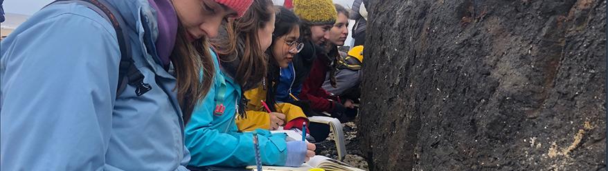 Earth Sciences Fieldwork