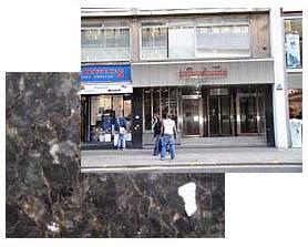Devonian Torquay Marble