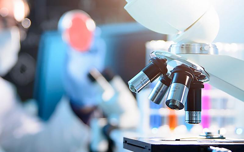 Fine fellowships: new grants, new studies | Eastman Dental