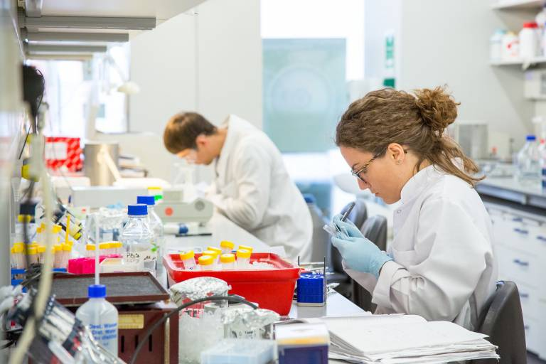 Research laboratory at UCL