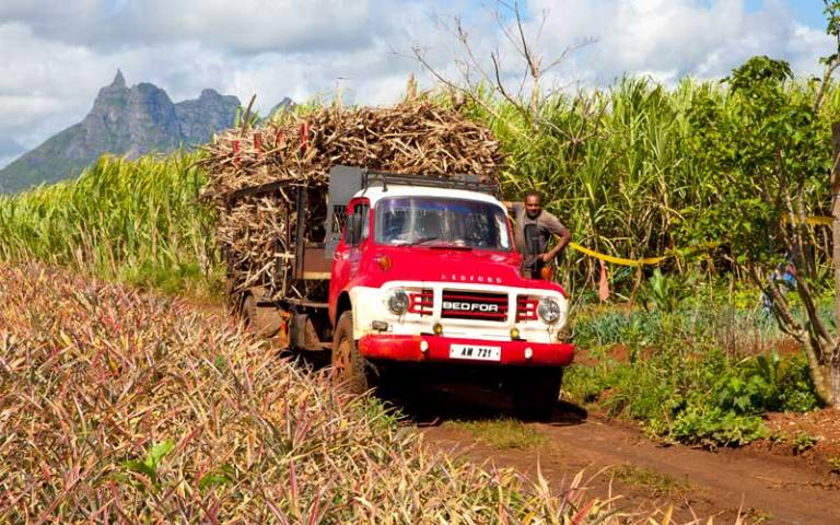 Agricultural worker with van
