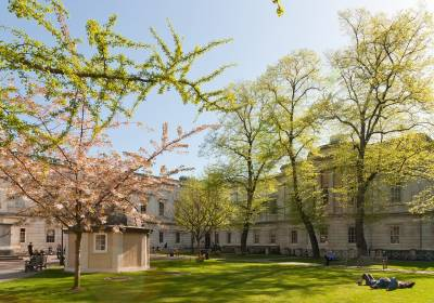 UCL Front Quad image with trees