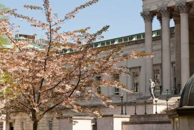 UCL Front Quad with trees in blossom