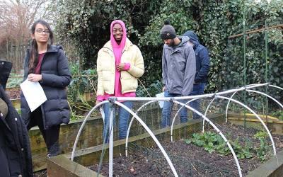 UCL environmental engineering students installing biodigesters at Surrey Docks Farm