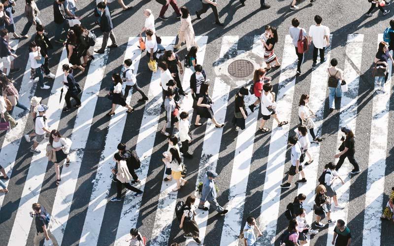 People walking across a pedetrian crossing