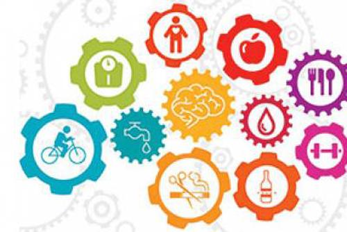 Health and Social Surveys