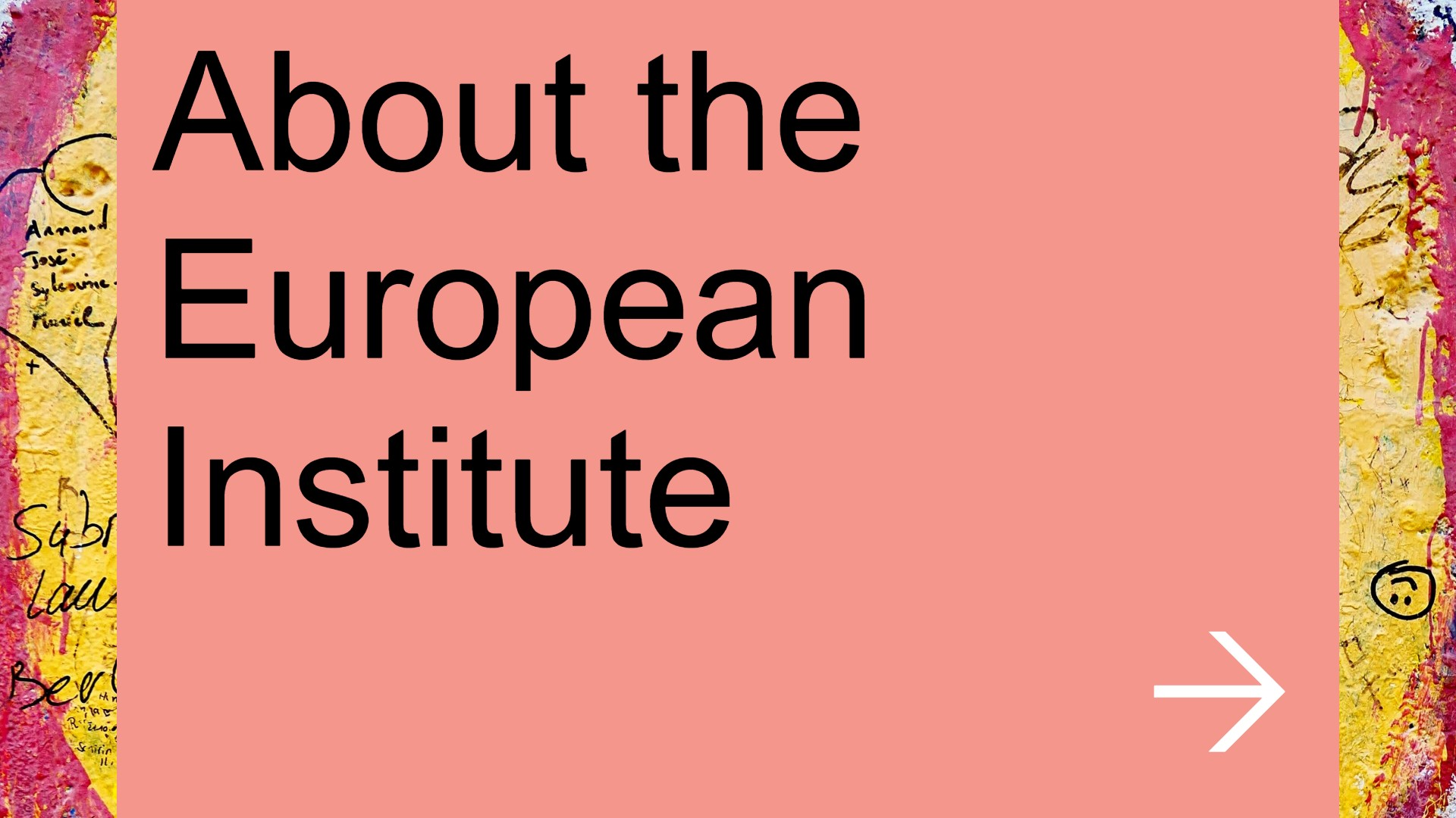 About the European Institute
